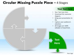 Circular Missing Puzzle Piece 4 Stages