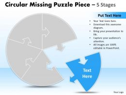 circular_missing_puzzle_piece_5_stages_Slide01