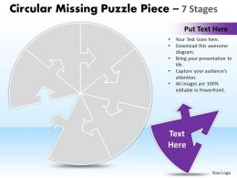 Circular Missing Puzzle Piece 7 Stages