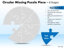 Circular Missing Puzzle Piece 8 Stages