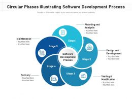 Circular Phases Illustrating Software Development Process