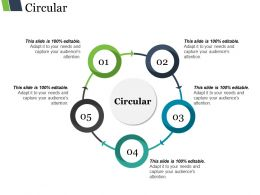 Circular Ppt Example Professional
