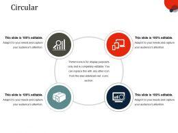 Circular Ppt Slides Picture