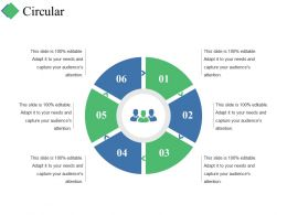 Circular Ppt Summary Graphic Tips