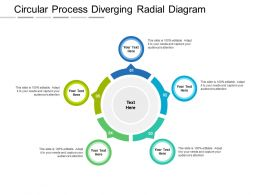 Circular Process Diverging Radial Diagram
