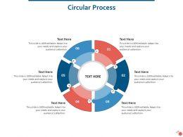 Circular Process Mitigation Strategies Ppt Powerpoint Presentation Portfolio