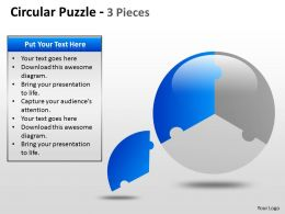 Circular Puzzle 2 and 3 Pieces ppt 6