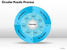 Circular Puzzle Flowchart Process Diagram