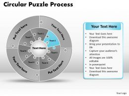 circular_puzzle_flowchart_templates_process_diagram_9_Slide03