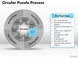 circular_puzzle_flowchart_templates_process_diagram_9_Slide04