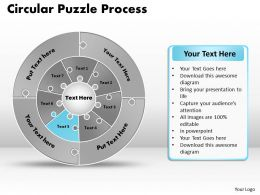 circular_puzzle_flowchart_templates_process_diagram_9_Slide06