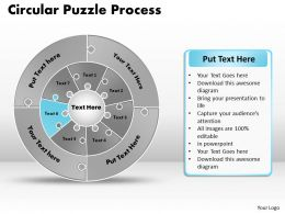 circular_puzzle_flowchart_templates_process_diagram_9_Slide07