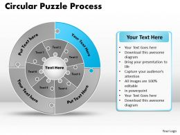 circular_puzzle_flowchart_templates_process_diagram_9_Slide10