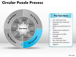 circular_puzzle_flowchart_templates_process_diagram_9_Slide11