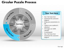 circular_puzzle_flowchart_templates_process_diagram_9_Slide12