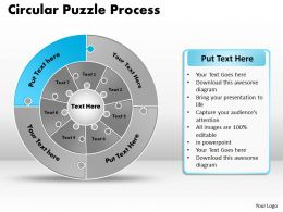 circular_puzzle_flowchart_templates_process_diagram_9_Slide13