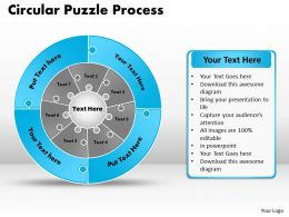 circular_puzzle_flowchart_templates_process_diagram_9_Slide14