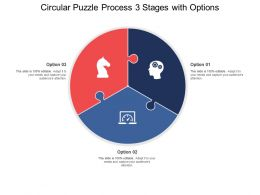 Circular Puzzle Process 03 Stages With Options