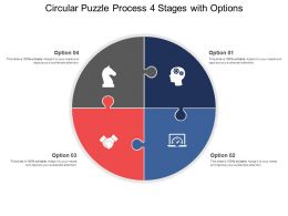 Circular Puzzle Process 04 Stages With Options