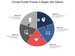 Circular Puzzle Process 05 Stages With Options