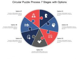 Circular Puzzle Process 07 Stages With Options