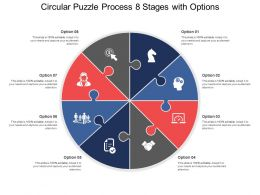Circular Puzzle Process 08 Stages With Options