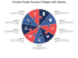 Circular Puzzle Process 09 Stages With Options