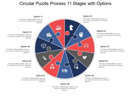 circular_puzzle_process_11_stages_with_options_Slide01