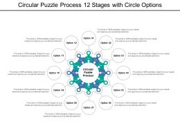 Circular Puzzle Process 12 Stages With Circle Options