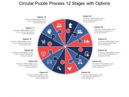 Circular Puzzle Process 12 Stages With Options