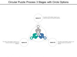 Circular Puzzle Process 3 Stages With Circle Options