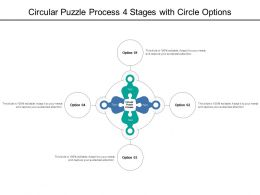 Circular Puzzle Process 4 Stages With Circle Options