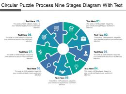 Circular Puzzle Process Nine Stages Diagram With Text