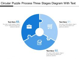 Circular Puzzle Process Three Stages Diagram With Text
