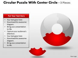 Circular Puzzle With Center Circle 2 and 3 Pieces ppt 6