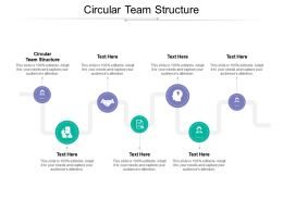 Circular Team Structure Ppt Powerpoint Presentation Microsoft Cpb