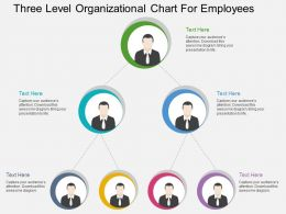 cj Three Level Organizational Chart For Employees Flat Powerpoint Design