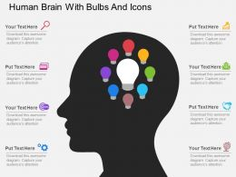 Ck Human Brain With Bulbs And Icons Flat Powerpoint Design