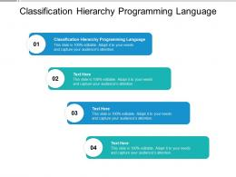 Classification Hierarchy Programming Language Ppt Powerpoint Presentation Professional Themes Cpb