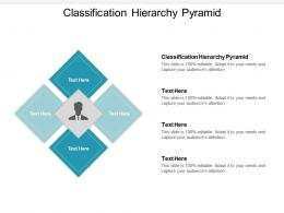 Classification Hierarchy Pyramid Ppt Powerpoint Presentation Icon Designs Download Cpb