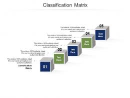 Classification Matrix Ppt PowerPoint Presentation Professional Portfolio Cpb