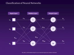 Classification Of Neural Networks Input Powerpoint Presentation Shapes