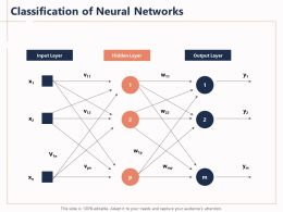 Classification Of Neural Networks X1 Ppt Powerpoint Presentation Outfit