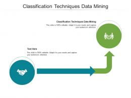 Classification Techniques Data Mining Ppt PowerPoint Presentation Infographic Format Cpb