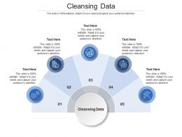 Cleansing Data Ppt Powerpoint Presentation Outline Cpb
