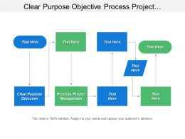 Clear Purpose Objective Process Project Management Technology Environment