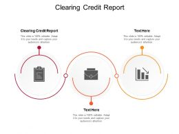 Clearing Credit Report Ppt Powerpoint Presentation Styles Vector Cpb