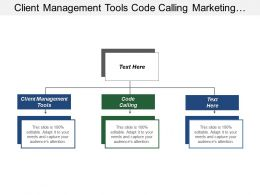 Client Management Tools Code Calling Marketing Strategy Approach