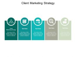 Client Marketing Strategy Ppt Powerpoint Presentation Gallery Professional Cpb