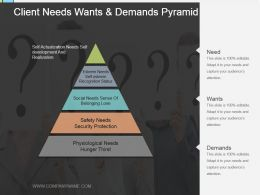 Client Needs Wants And Demands Pyramid Powerpoint Ideas